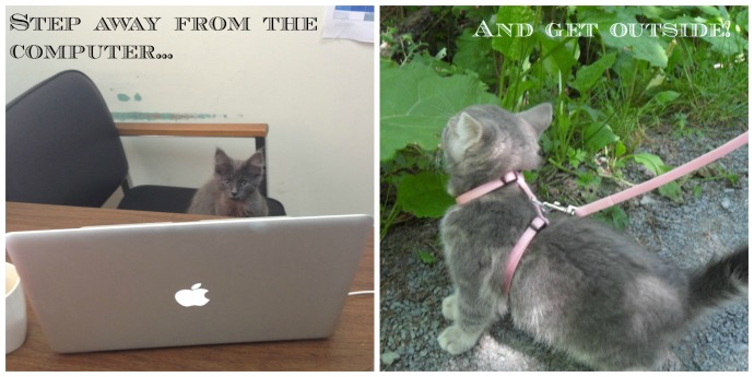 work leisure kitty