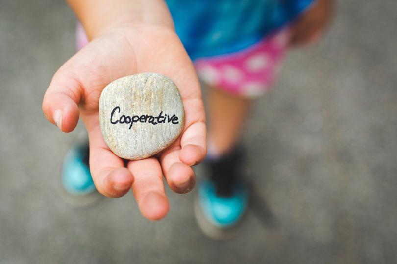 cooperative-1246862_1280